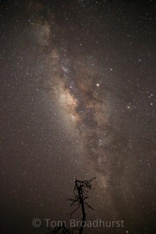 The Milky way captured in remote Semliki, Uganda. Copyright Tom Broadhurst.